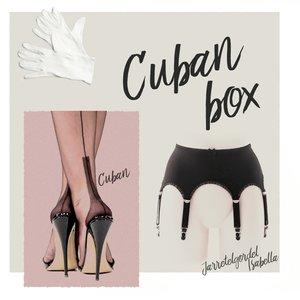 Complete set, Jarretelgordel Isabella met een paar Cuban Heel Naadkousen plus een paar handschoenen